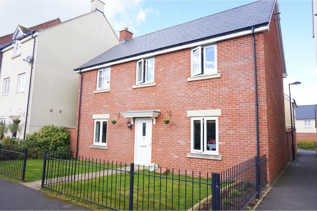 Thumbnail Detached house for sale in Osmund Walk, Salisbury
