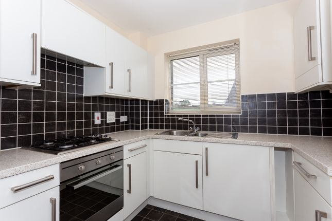 Kitchen of Flax Meadow Lane, Axminster EX13