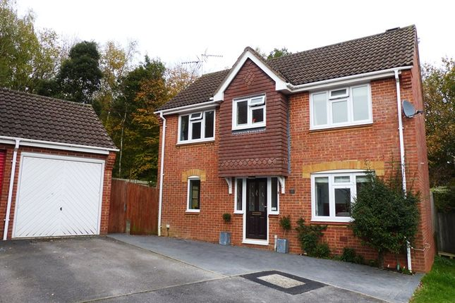 Thumbnail Detached house for sale in Privett Close, Lychpit, Basingstoke