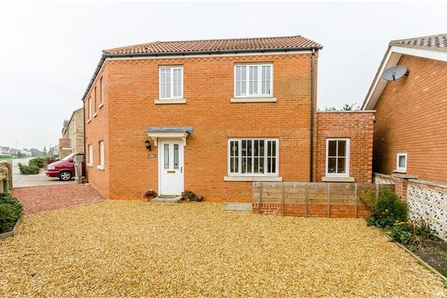 Thumbnail Detached house for sale in St. Johns Road, Ely