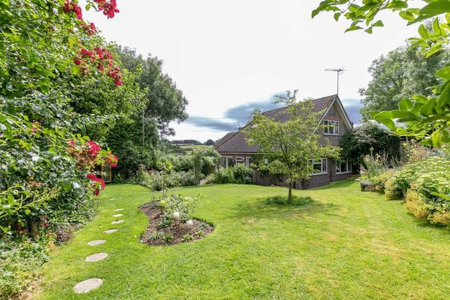 Thumbnail Bungalow for sale in Withypitts, Turners Hill, West Sussex