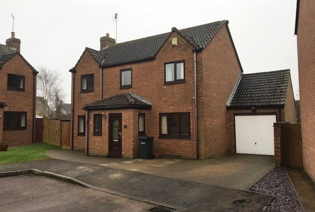 Thumbnail Detached house to rent in Ermine Rise, Great Casterton, Stamford