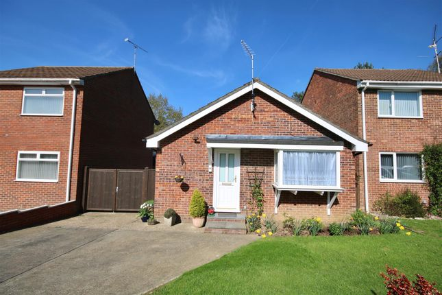 Thumbnail Detached bungalow for sale in Spruce Avenue, Waterlooville