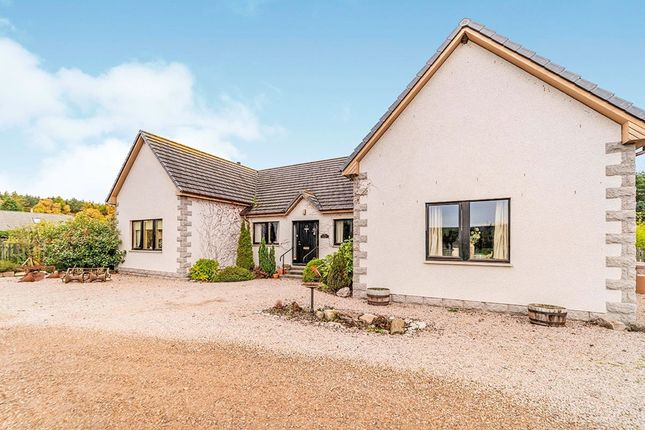 Thumbnail Bungalow for sale in Orton, Fochabers