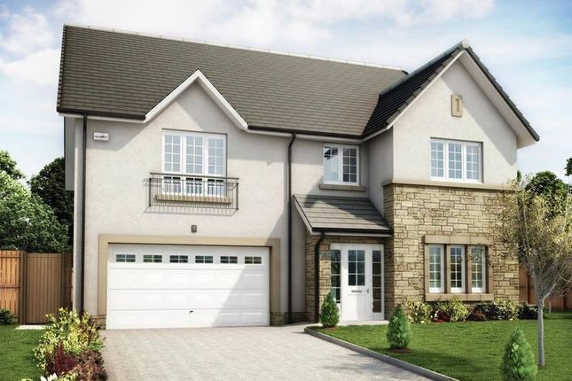 """Thumbnail Detached house for sale in """"The Lewis"""" at Lowrie Gait, South Queensferry"""