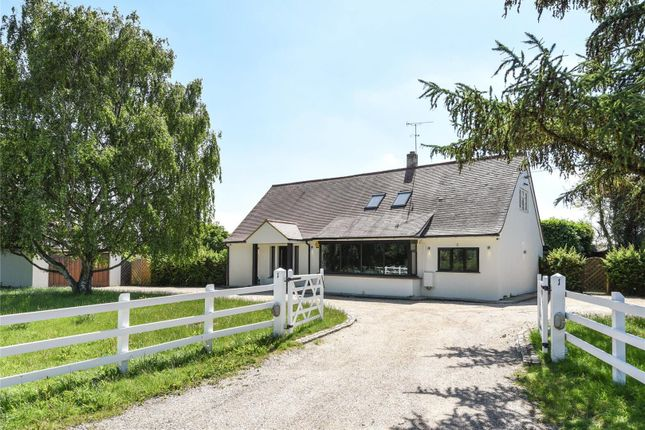 Thumbnail Property for sale in London Road, Stanford Rivers, Ongar, Essex