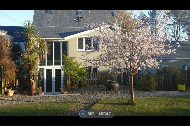 Thumbnail Flat to rent in Verde Limone, Carn Grey, St. Austell