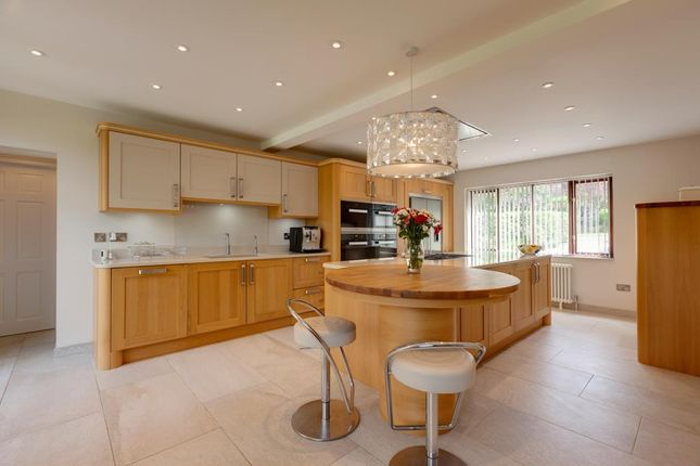 Thumbnail Detached house for sale in Sefton Road, Sheffield