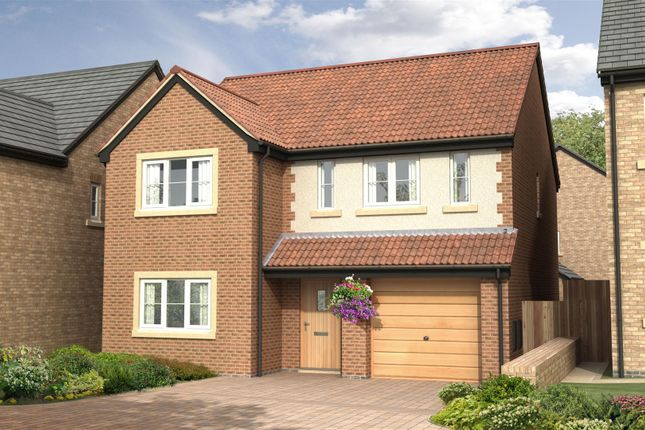 Thumbnail Detached house for sale in The Sycamore - Nursery Gardens, Station Road, Stannington