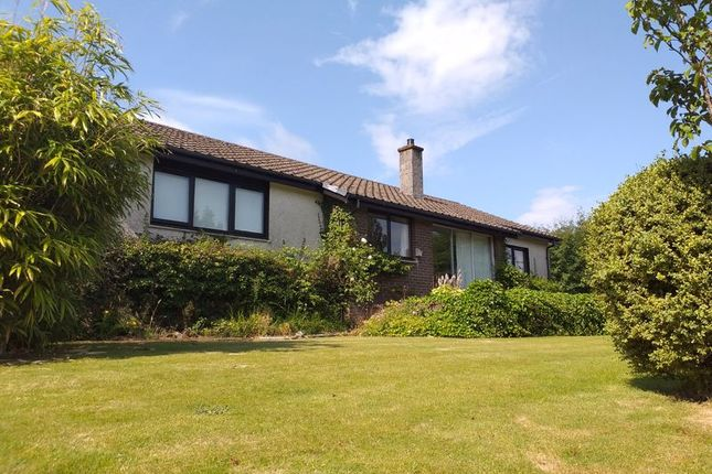 Thumbnail Bungalow for sale in Clacheranmor, Glendaruel, Colintraive