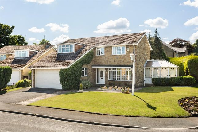 Thumbnail Detached house to rent in Pool Bank Close, Pool In Wharfedale, Otley