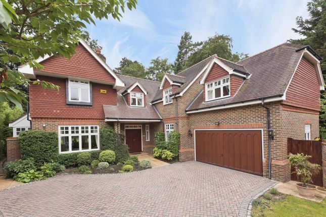 Thumbnail Detached house to rent in Courtney Place, Cobham
