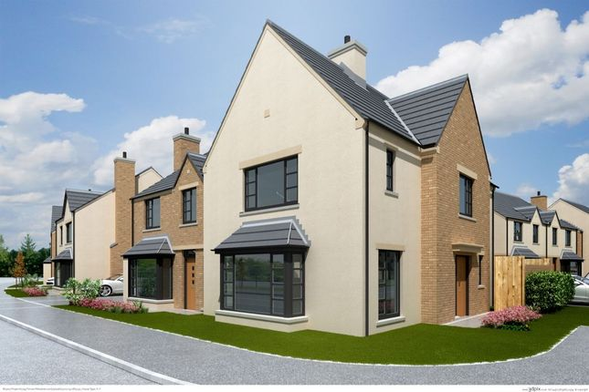 Thumbnail Semi-detached house for sale in The Foxglove, Ferrard Meadow, Antrim