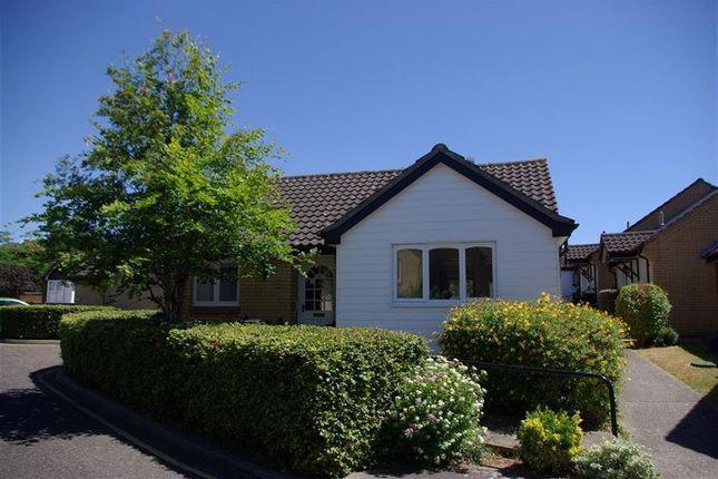 Thumbnail Bungalow to rent in Newnham Green, Maldon