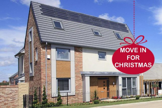 """Thumbnail Detached house for sale in """"Raby"""" at Whitworth Park Drive, Houghton Le Spring"""
