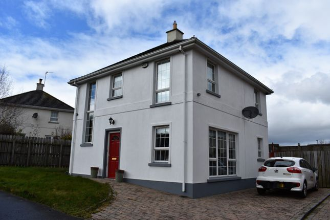 Thumbnail Detached house for sale in Milebush Manor, Dromore