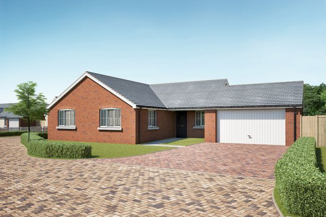 Thumbnail Detached bungalow for sale in Vine Tree Close, Withington