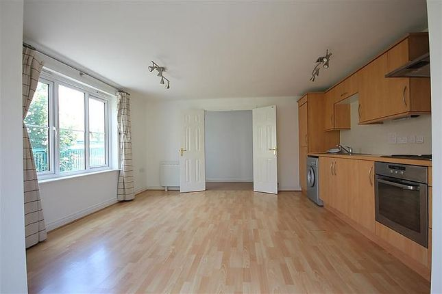 Kitchen/Living/Dining Room