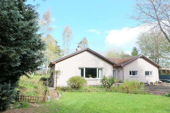 Thumbnail Detached bungalow for sale in Whiskers, Arabella, Tain