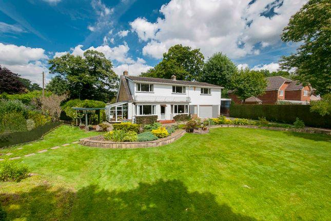 Thumbnail Detached house for sale in Ashford Road, Lenham