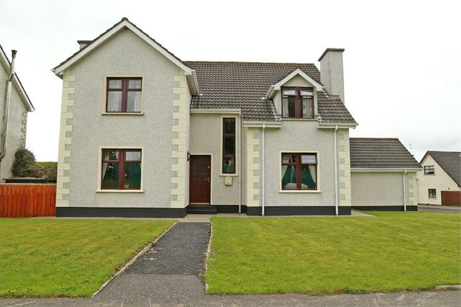 Thumbnail Detached house for sale in Rose Park, Limavady, County Londonderry
