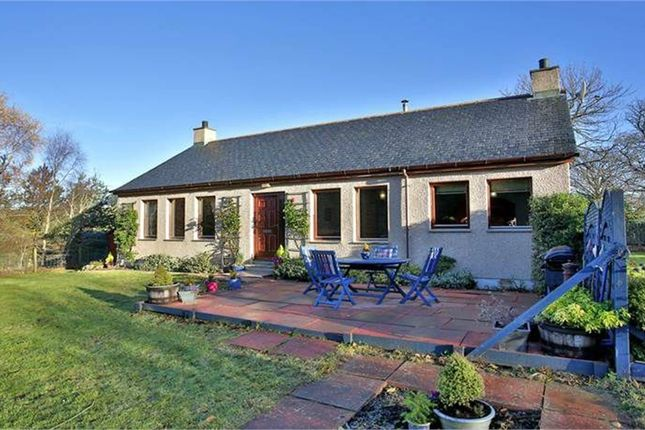 Thumbnail Detached bungalow for sale in Pittenderich, Lumphanan, Banchory, Aberdeenshire