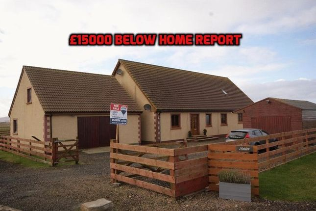 Thumbnail Detached bungalow for sale in Halkirk