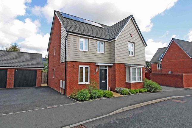 Thumbnail Detached house for sale in Sand Grove, Exeter