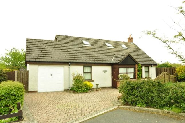 Thumbnail Bungalow to rent in High Garth Meadows, Ivegill, Carlisle
