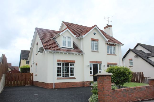 Thumbnail Detached house for sale in Castleowen, Newry