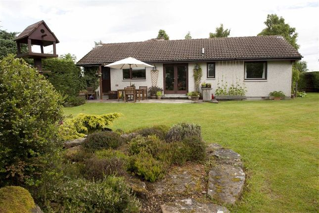 Thumbnail Detached bungalow for sale in Culbokie, Dingwall, Ross-Shire