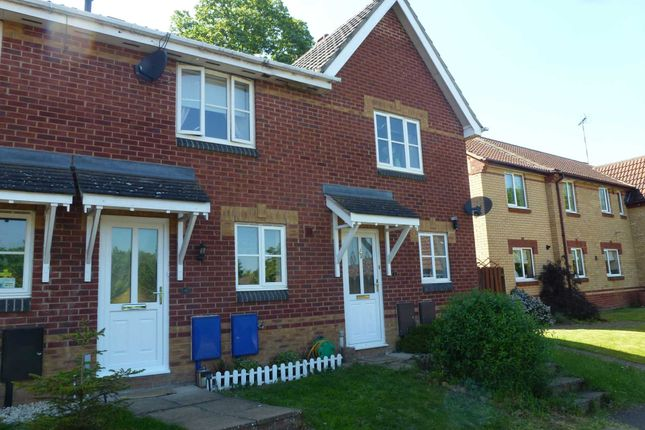 Thumbnail Terraced house to rent in Ashby Fields, Daventry