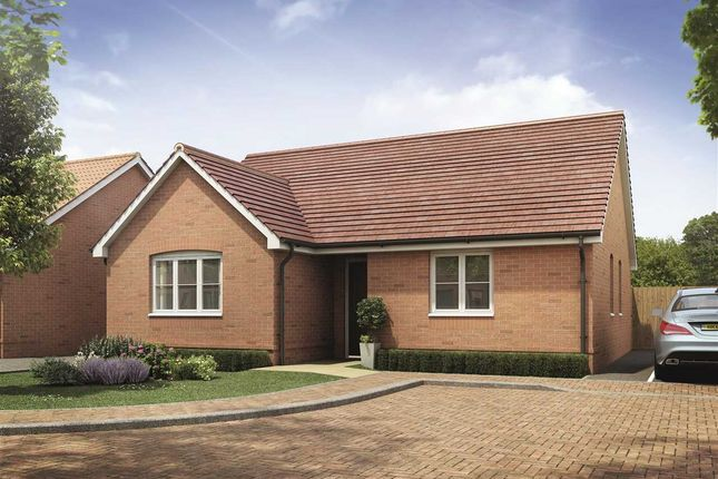 Thumbnail Bungalow for sale in The Westerfield, Holbrook, Ipswich