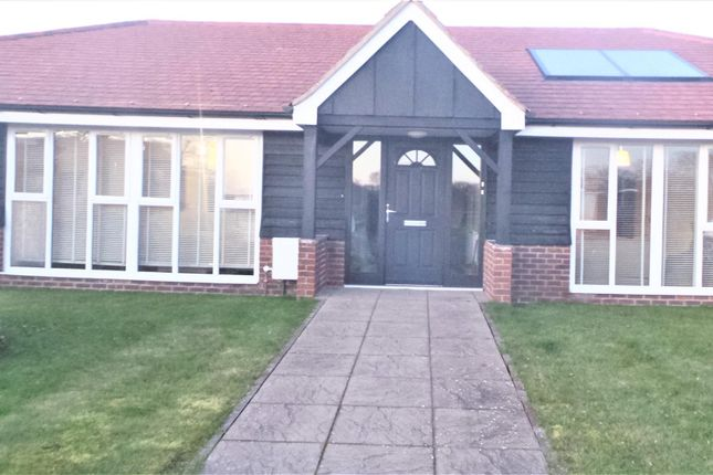 Thumbnail Semi-detached bungalow to rent in The Green, Dunsfold, Godalming