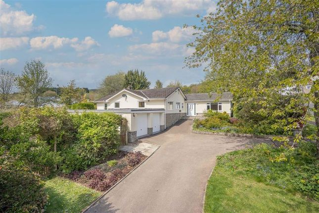 Thumbnail Bungalow for sale in Court House Road, Llanvair Discoed, Chepstow, Monmouthshire