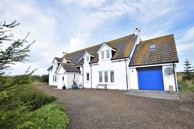 Thumbnail Detached house for sale in Lybster