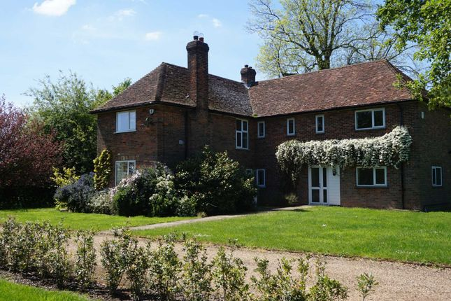 Thumbnail Country house to rent in Common Road, Studham, Dunstable