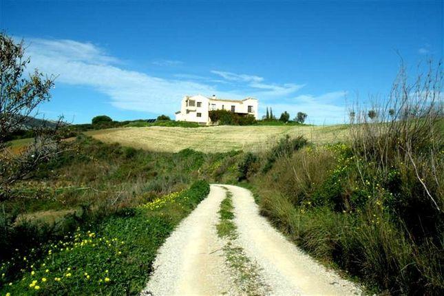 Thumbnail Equestrian property for sale in Manilva, Marbella Area, Costa Del Sol