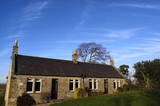 2 bed semi-detached house to rent in St. Andrews KY16