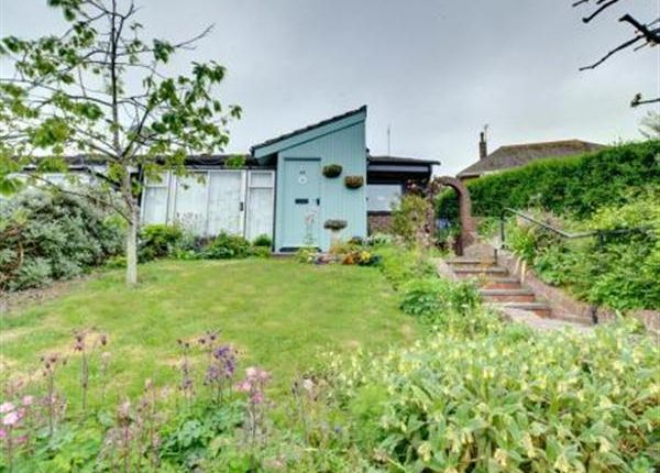 Thumbnail Bungalow to rent in Sir John Moore Avenue, Hythe