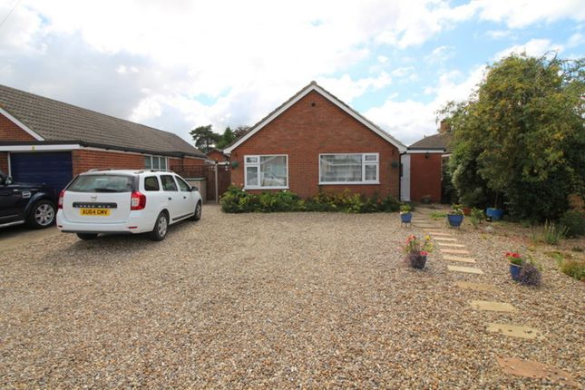 Thumbnail Detached bungalow for sale in Cardun Close, Blofield, Norwich