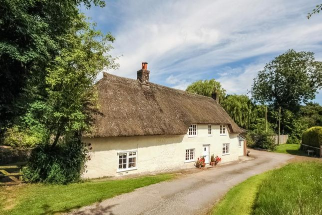 Thumbnail Detached house for sale in The Thatched House, Cheselbourne, Dorchester, Dorset