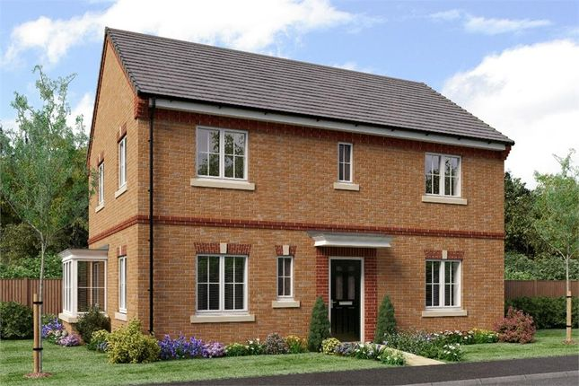 "Thumbnail Detached house for sale in ""The Stevenson"" at Sadberge Road, Middleton St. George, Darlington"