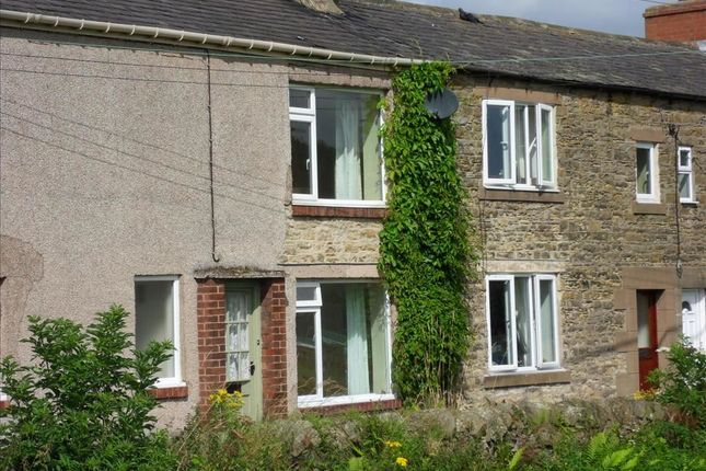 Thumbnail Terraced house to rent in Temple Houses, Haydon Bridge, Hexham
