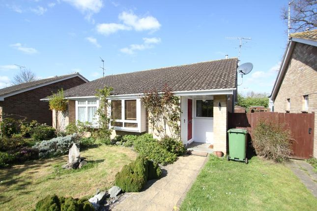 Thumbnail Bungalow to rent in Darvel Close, Woking