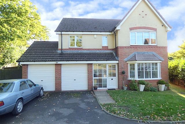 Thumbnail Detached house for sale in Birch Avenue, Holly Gardens, Northfield