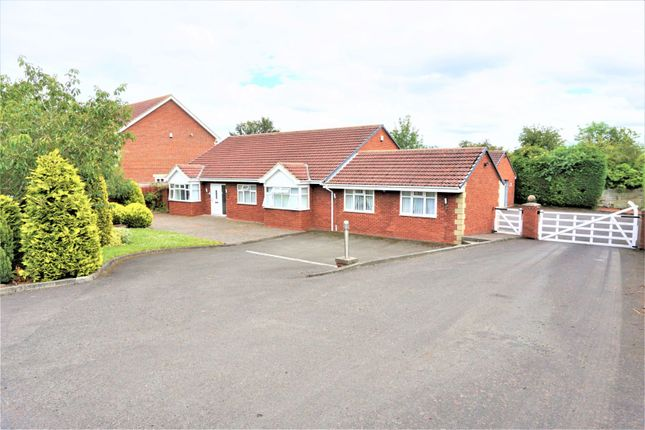 Thumbnail Detached bungalow for sale in Conifer Court, Ryton
