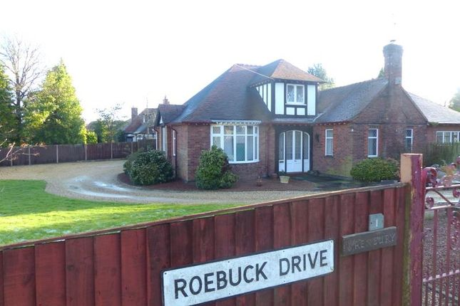 Thumbnail Detached bungalow to rent in Roebuck Drive, Mansfield