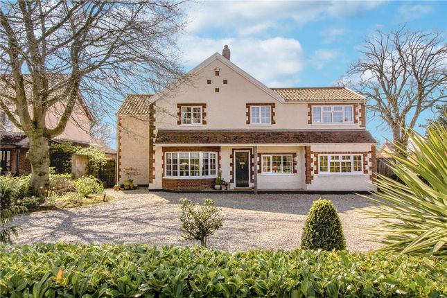 Thumbnail Detached house for sale in Keswick Road, Cringleford, Norwich
