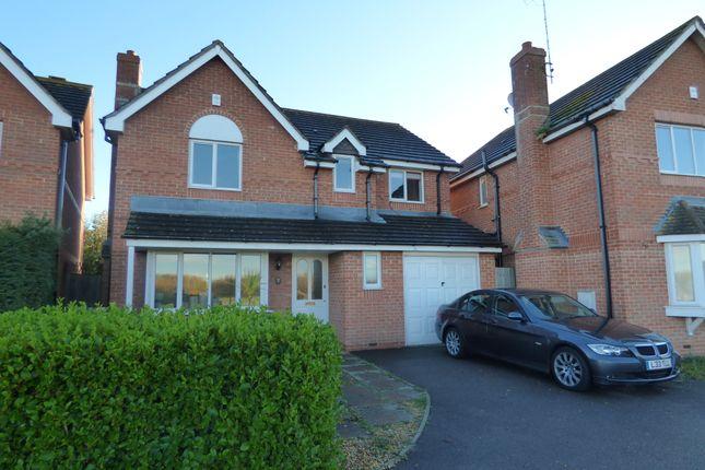 Thumbnail Detached house to rent in Sunflower Close, Littlehampton